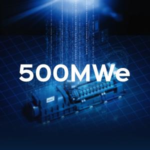 500MWe 1